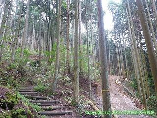 60-324愛媛県西条市