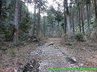 6001-107愛媛県西条市