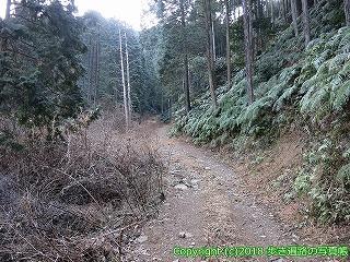 6001-113愛媛県西条市