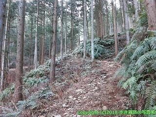 6001-122愛媛県西条市