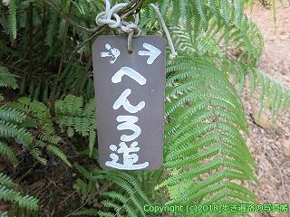 6001-148愛媛県西条市