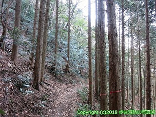 6001-179愛媛県西条市