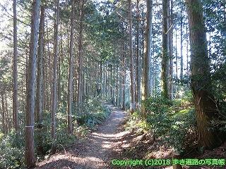 6001-189愛媛県西条市