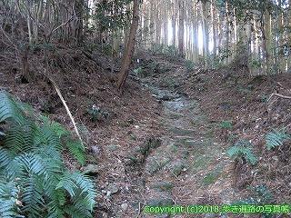 6001-207愛媛県西条市