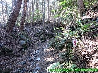 6001-231愛媛県西条市