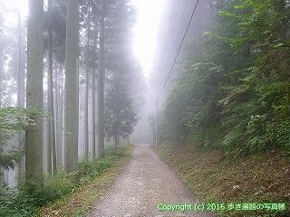 61-007愛媛県西条市