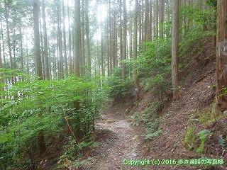 61-016愛媛県西条市