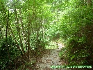 61-018愛媛県西条市