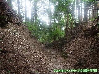 61-024愛媛県西条市