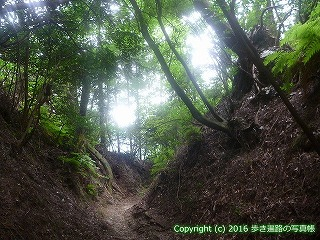61-025愛媛県西条市