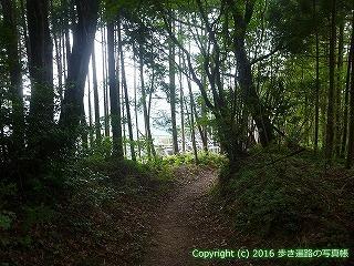 61-030愛媛県西条市