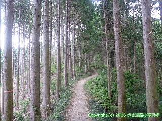 61-040愛媛県西条市