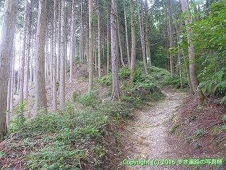 61-041愛媛県西条市