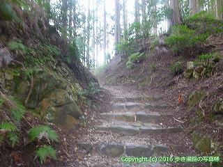 61-042愛媛県西条市