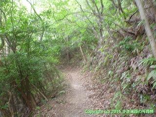 61-059愛媛県西条市