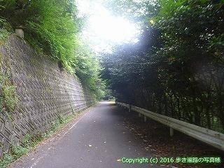 61-086愛媛県西条市
