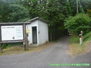 61-090愛媛県西条市白滝奥之院