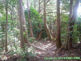 61-123愛媛県西条市