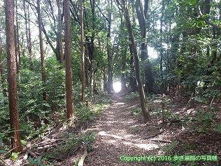 61-124愛媛県西条市
