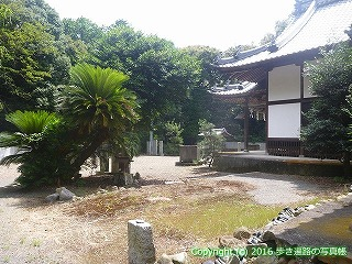 61-125愛媛県西条市高鴨神社