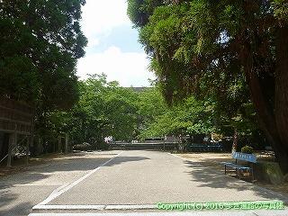 61-133愛媛県西条市