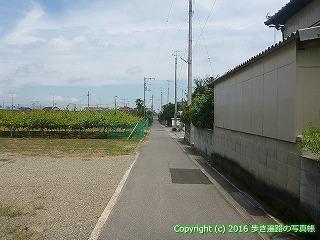 62-009愛媛県西条市