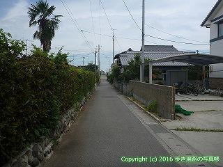 62-010愛媛県西条市