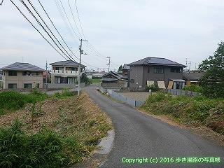 65-008愛媛県西条市
