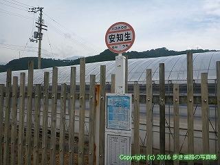 65-017愛媛県西条市安知生バス停