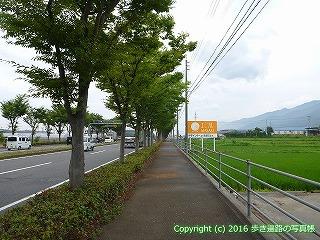 65-080愛媛県西条市