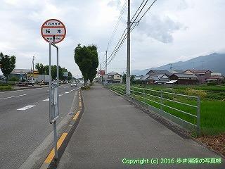 65-084愛媛県新居浜市