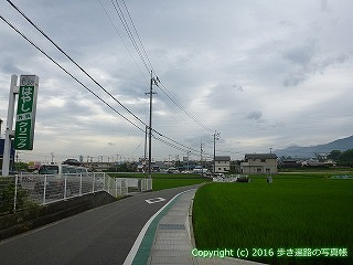65-103愛媛県新居浜市