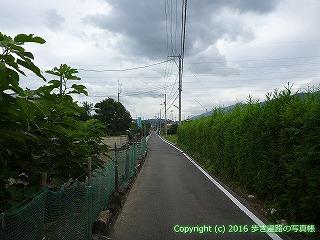 65-160愛媛県新居浜市