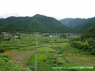 65-196愛媛県新居浜市