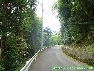 65-241愛媛県四国中央市