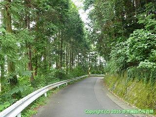 65-244愛媛県四国中央市