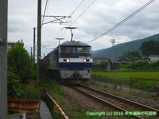 65-271愛媛県四国中央市