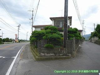 65-319愛媛県四国中央市国道11号線交差点