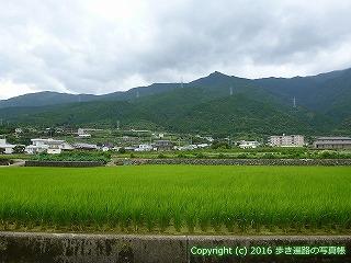 65-349愛媛県四国中央市