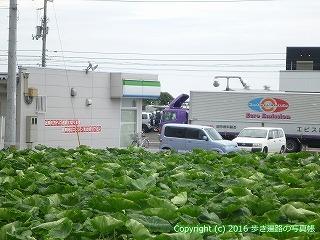 65-352愛媛県四国中央市