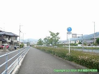 65-439愛媛県四国中央市