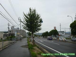 65-444愛媛県四国中央市