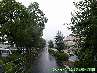 65-455愛媛県四国中央市