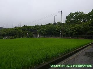 65-463愛媛県四国中央市