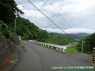66-049愛媛県四国中央市
