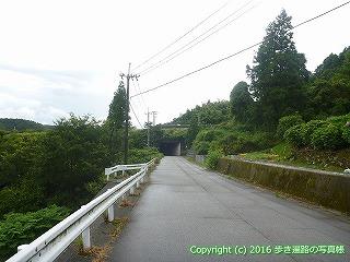 66-063愛媛県四国中央市
