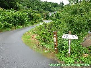 66-116愛媛県四国中央市