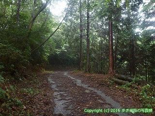 66-129愛媛県四国中央市