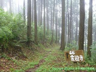 66-155徳島県三好市
