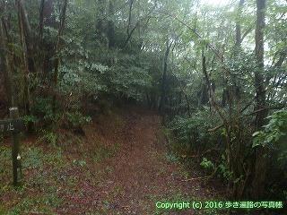 66-159徳島県三好市